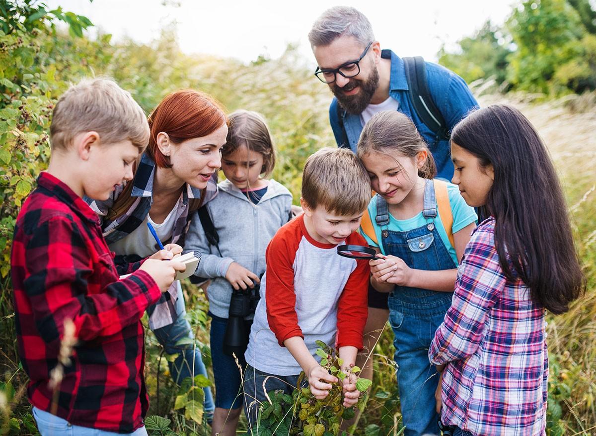direccion-coordinacion-actividades-tiempo-libre-infantil-juvenil