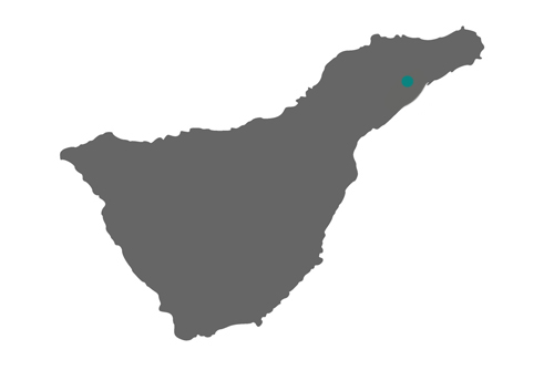 AULA Tenerife
